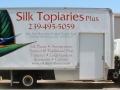silk topiaries